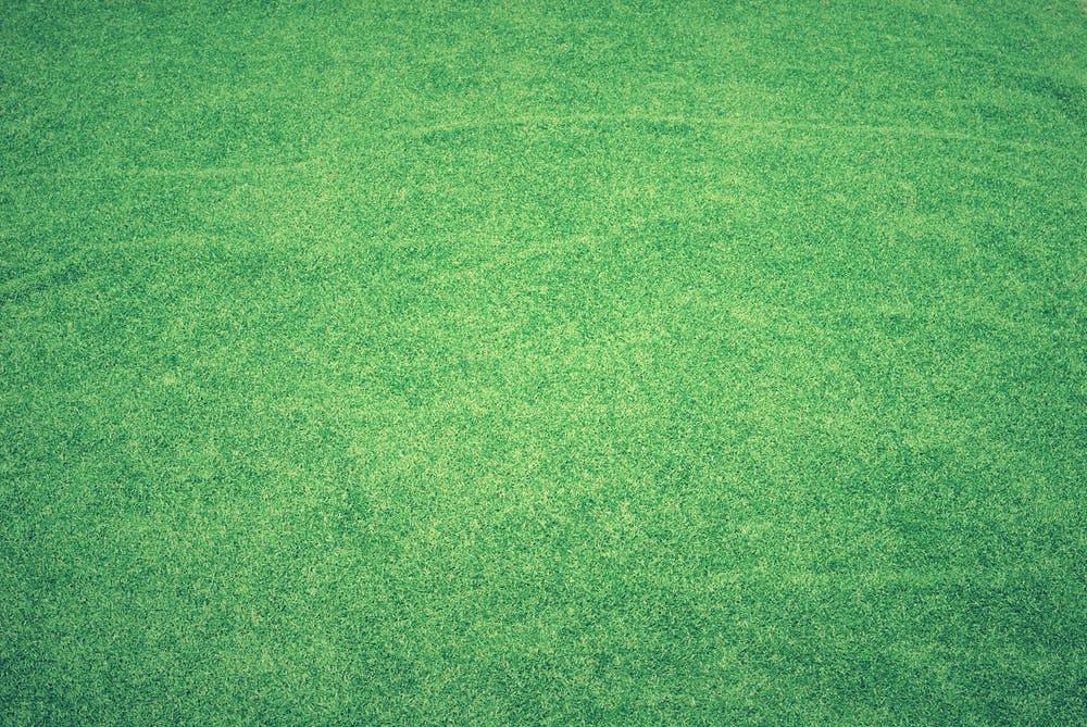 koberec zelený