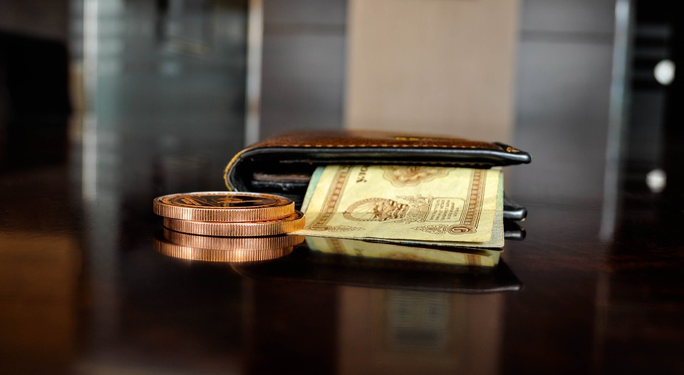 portmonka s penězi